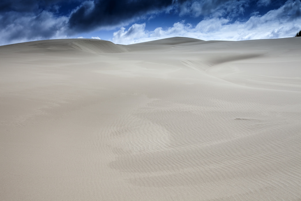 The seemingly endless sands of Oregon's coastal dunes.