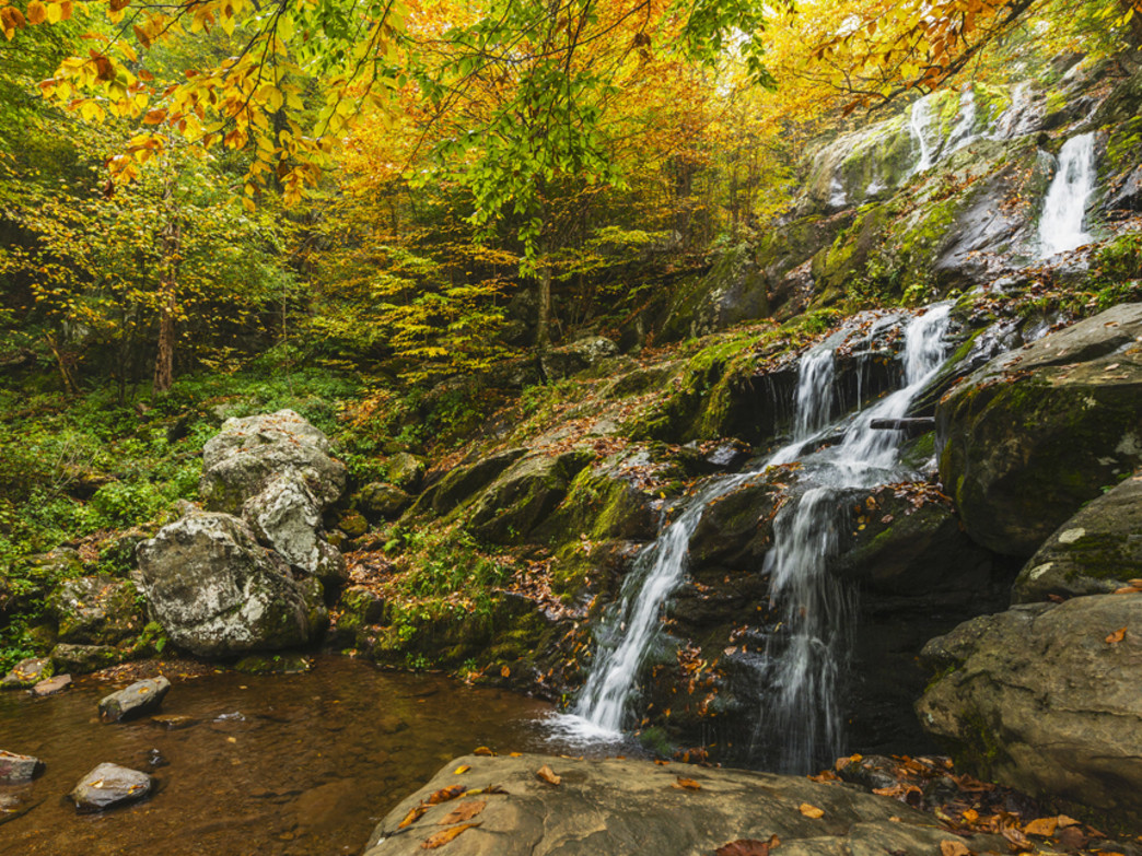 A photographer's delight in Virginia—get to know the low-lying areas in Shenandoah. Pictured here, Dark Hallows Falls in early autumn.