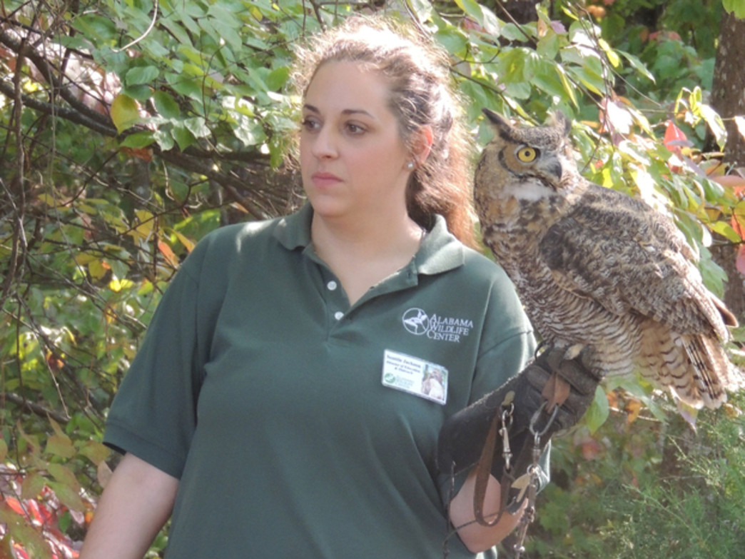 Get to know real-life owls at this event at Oak Mountain State Park.