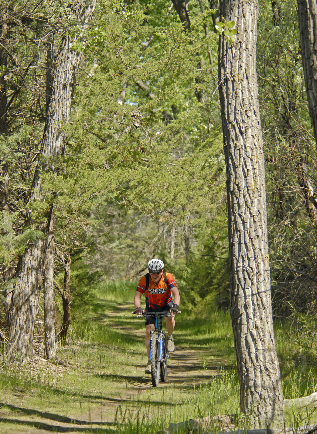 On an island in the Missouri River, the LaFramboise Island Nature Area offers many miles of flat singletrack trails.