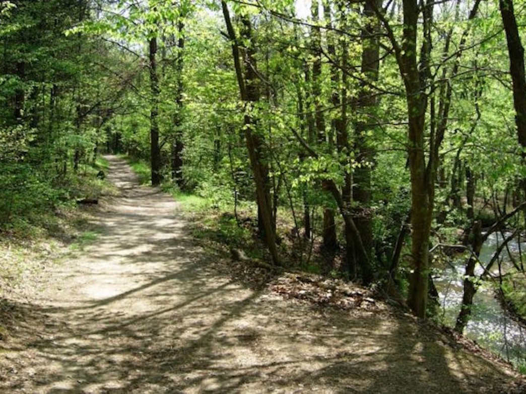 Panther Creek State Park biking path.