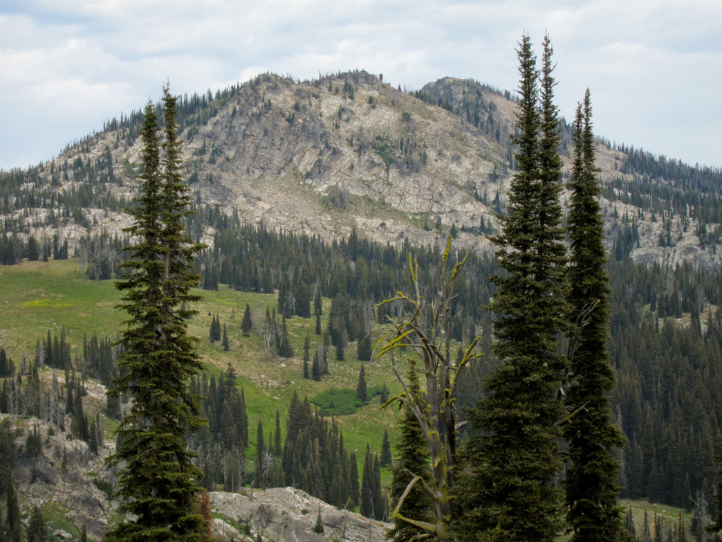 The Payette National Forest is full of off-the-beaten-path hikes.