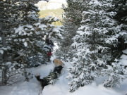 Image for Hessie Trail - Snowshoeing