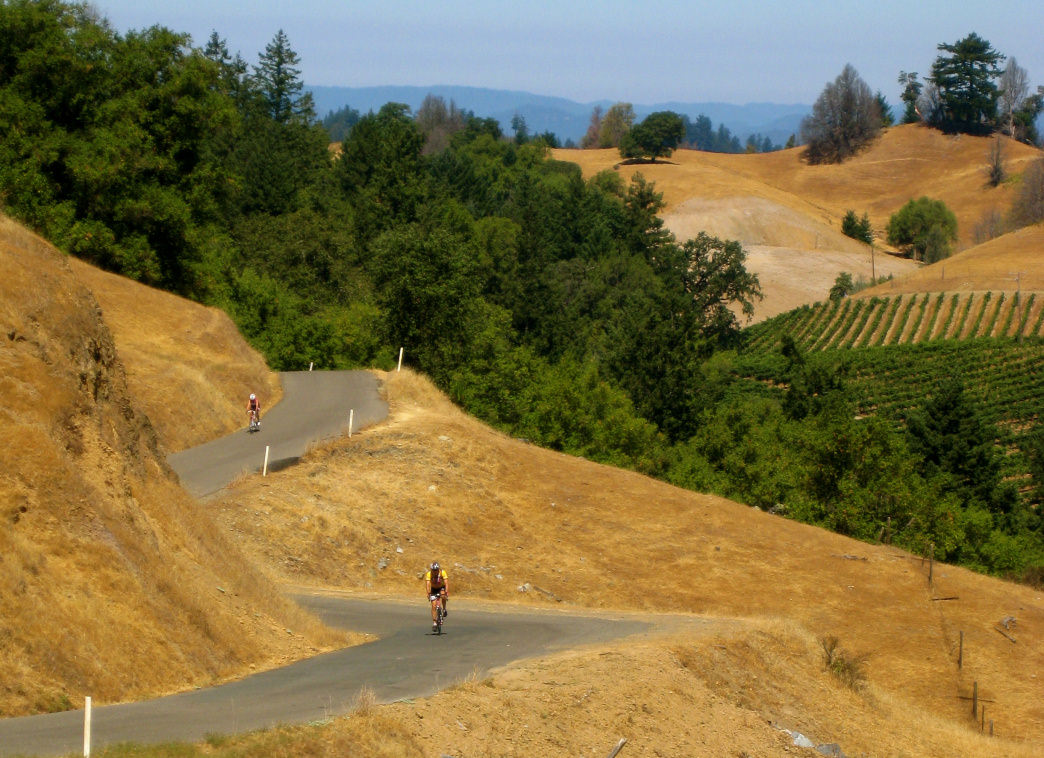 Take in Wine Country on two wheels with a bike tour through the vineyards.