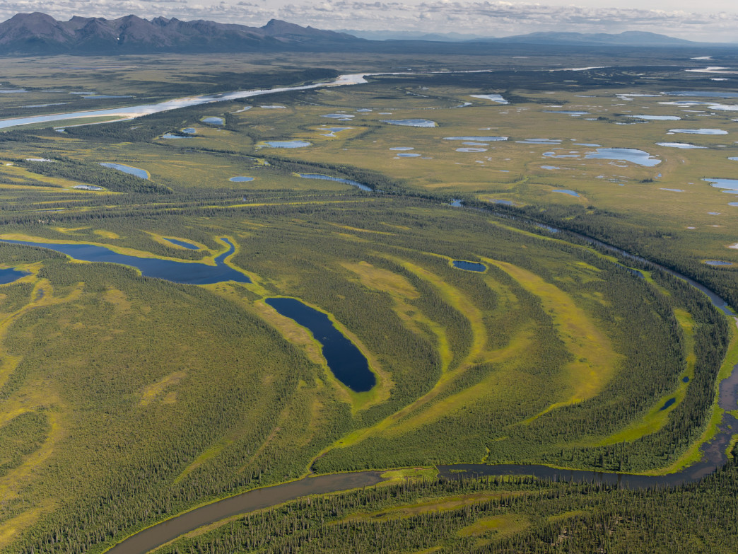 Wetlands along the Kobuk River.
