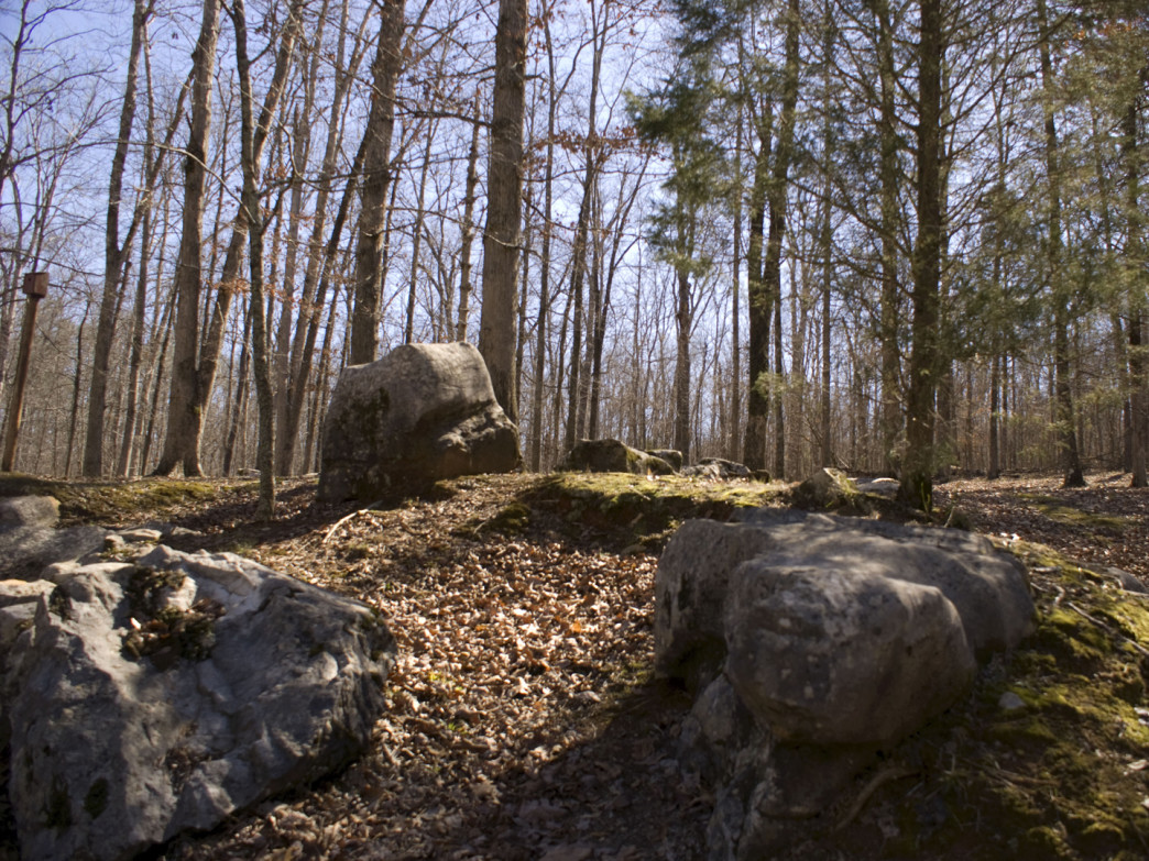 A family of mossy boulders sit quietly along the Fossil Mountain Trail near Rickwood Caverns.