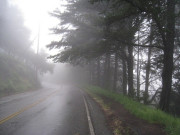 Image for Tunnel Road to Grizzly Peak Blvd
