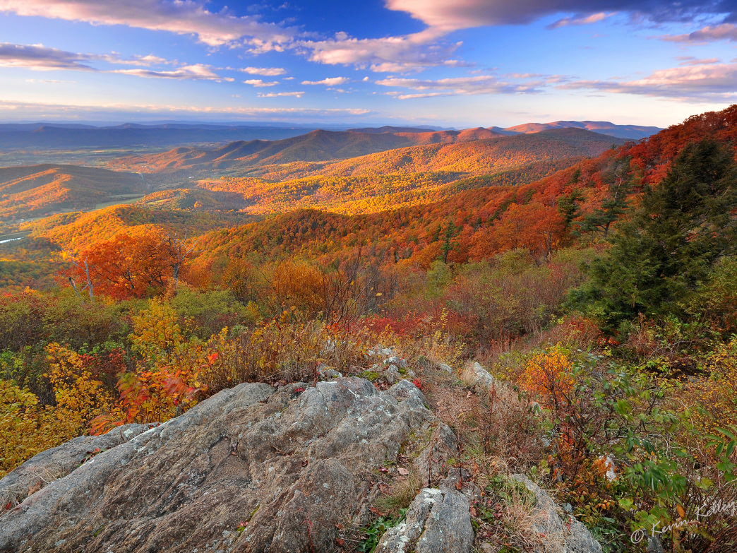 Fall colors in Shenandoah National Park.