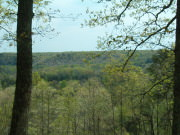 Image for Highland Rim Trail Section (Natchez Trace Scenic Trail)