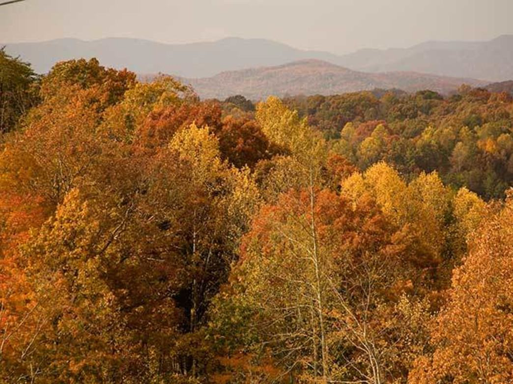 You don't have to drive far from Atlanta to find amazing fall colors.