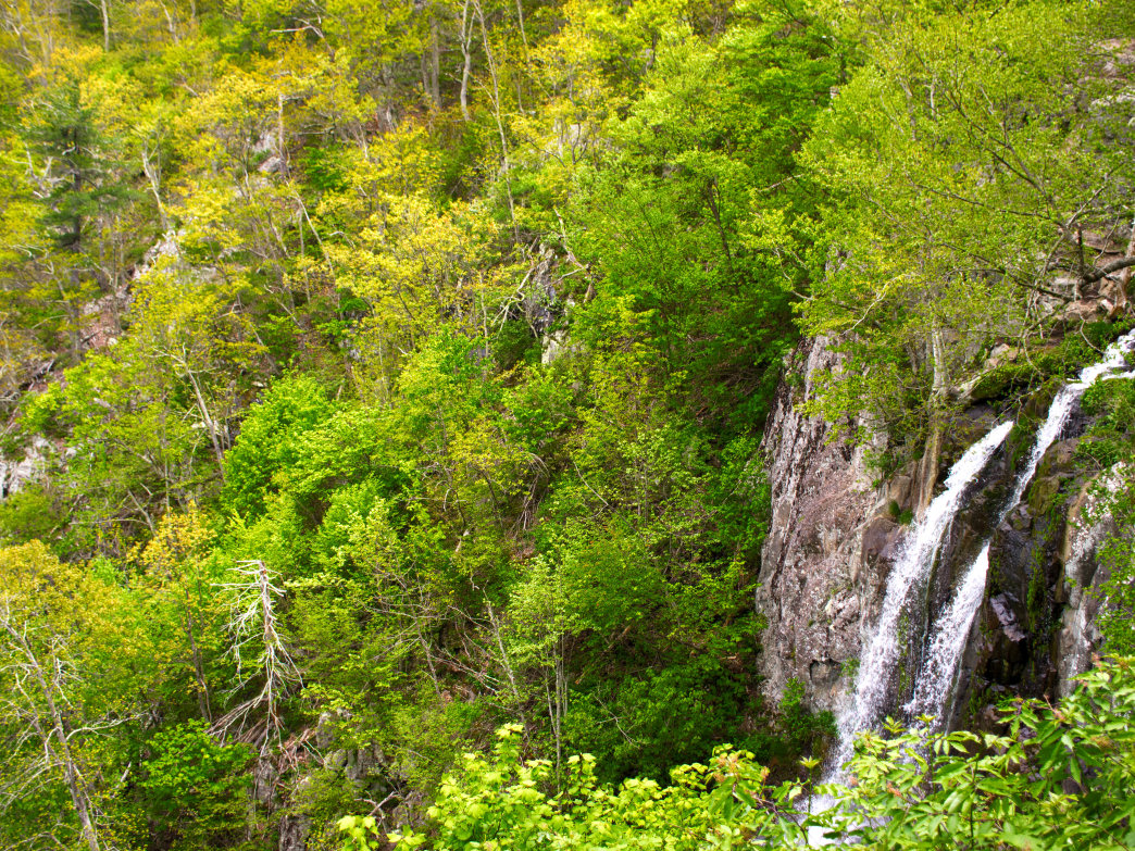 Shenandoah has some of the most unique, beautiful waterfalls in the country.