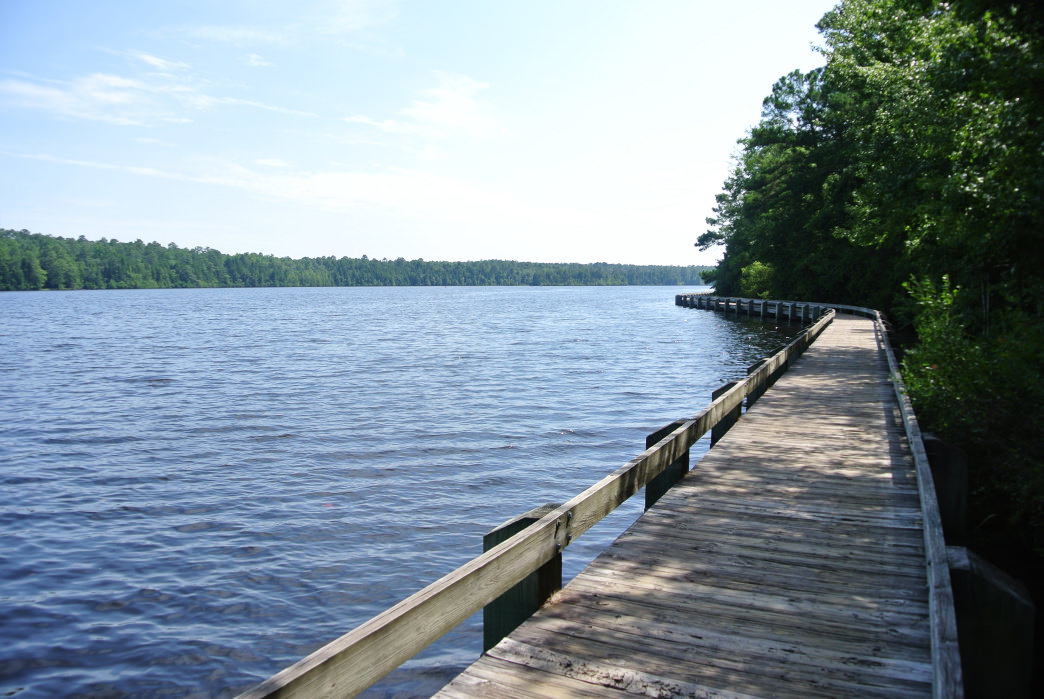 Several trails offer an on-land option to explore Cheraw State Park.