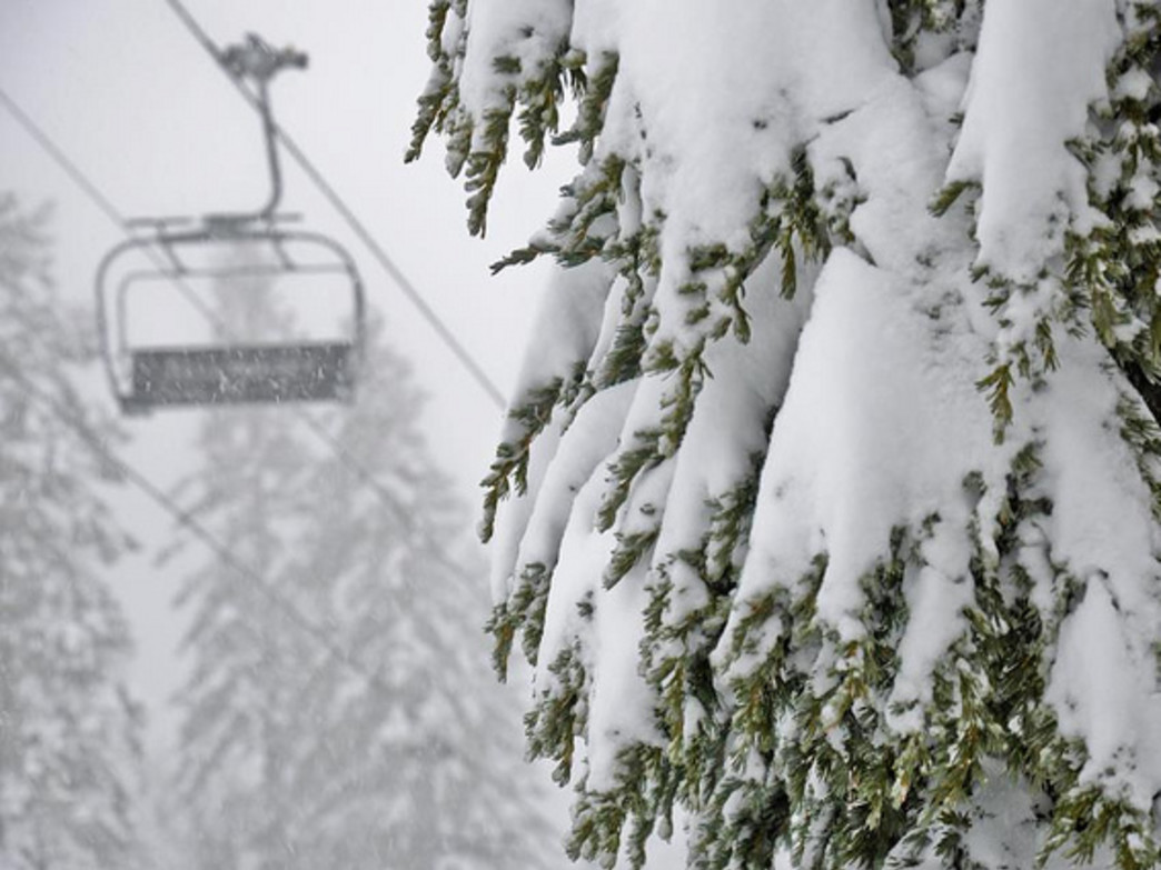 The fresh snow is here and the lifts at JHMR start turning on Thanksgiving Day.