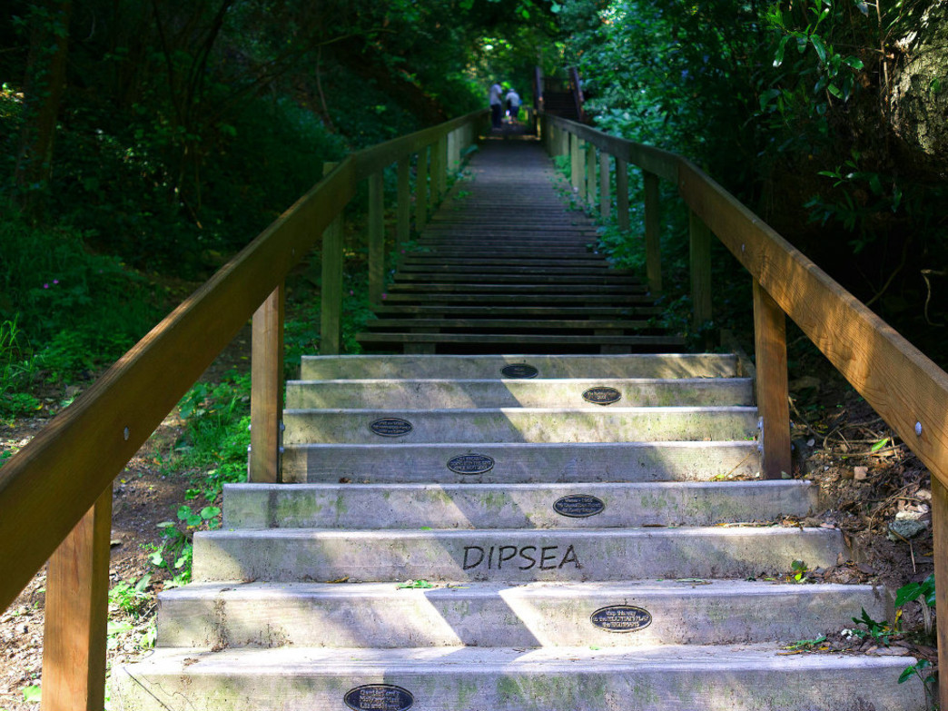 The infamous Dipsea stairs are just one obstacle of the course.