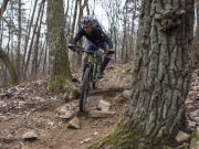 Snake Creek Gap downhill