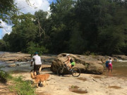 Image for Yellow River Park - Mountain Biking