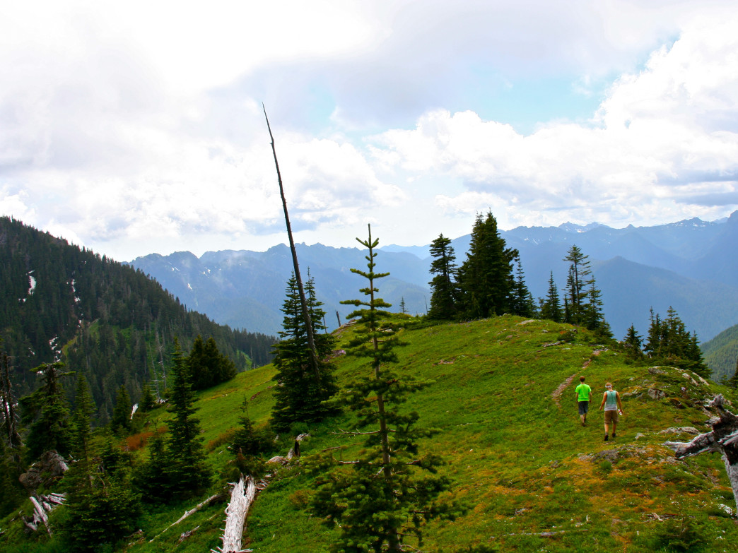 Hiking Olympic National Park, nearby Seattle, WA.