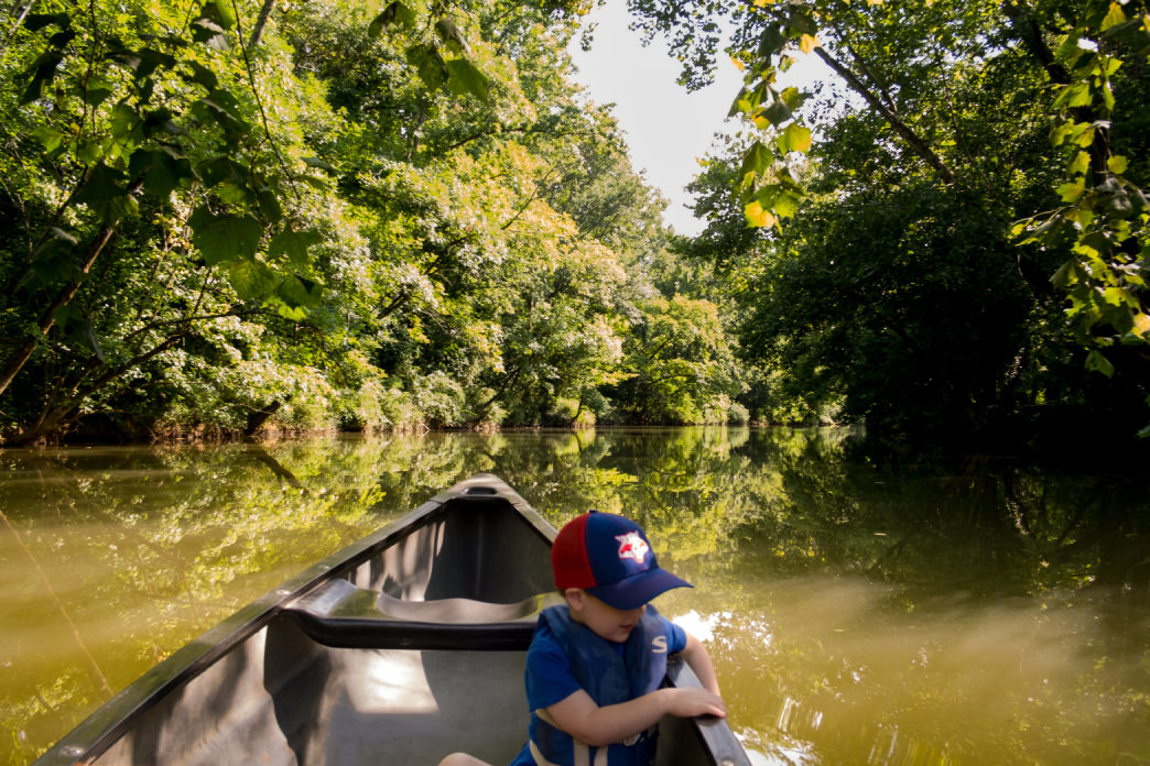 There's family fun to be had on Lookout Creek a few miles from Chattanooga. Perry Smyre