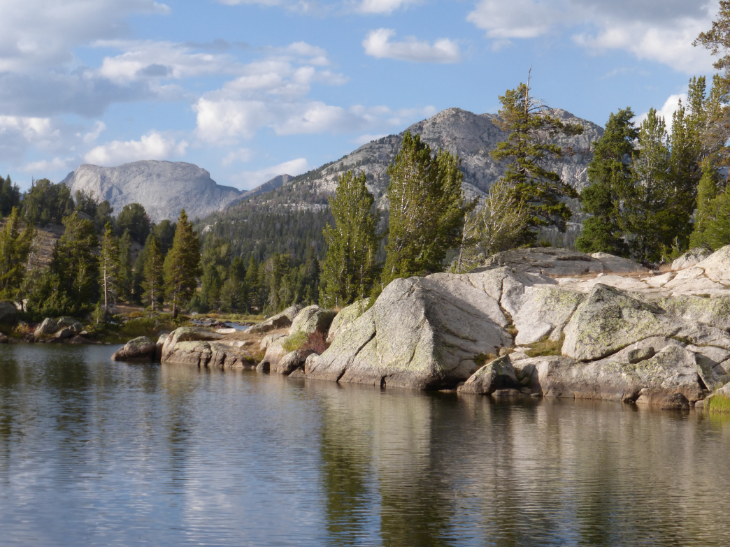 Find a great camping spot near Dad's Lake.
