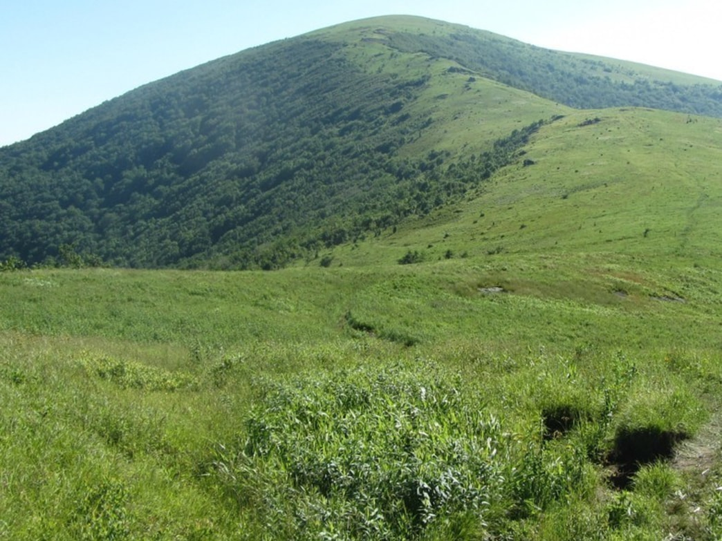 Roan Mountain Highlands offers some of the most spectacular backpacking trip in the Southeast.