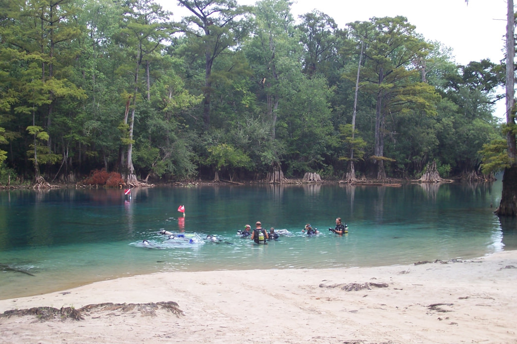 Morrison Springs is just one of the natural springs that dot the area.