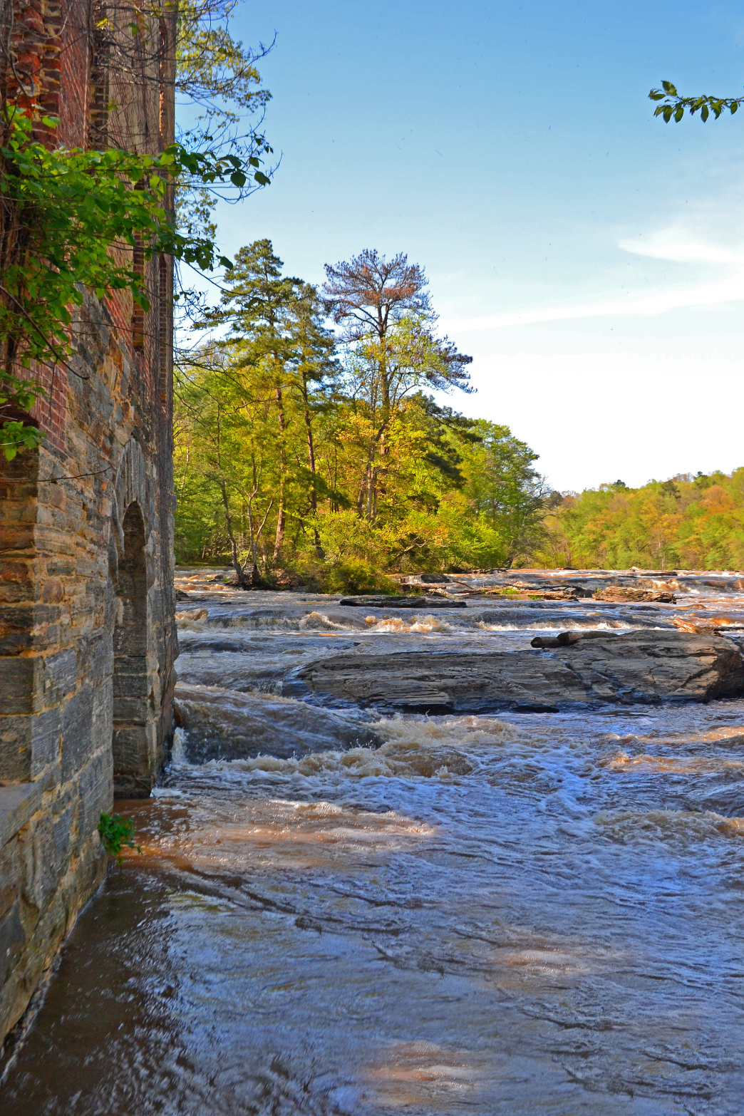 Sweetwater Creek State Park Bill Leffler