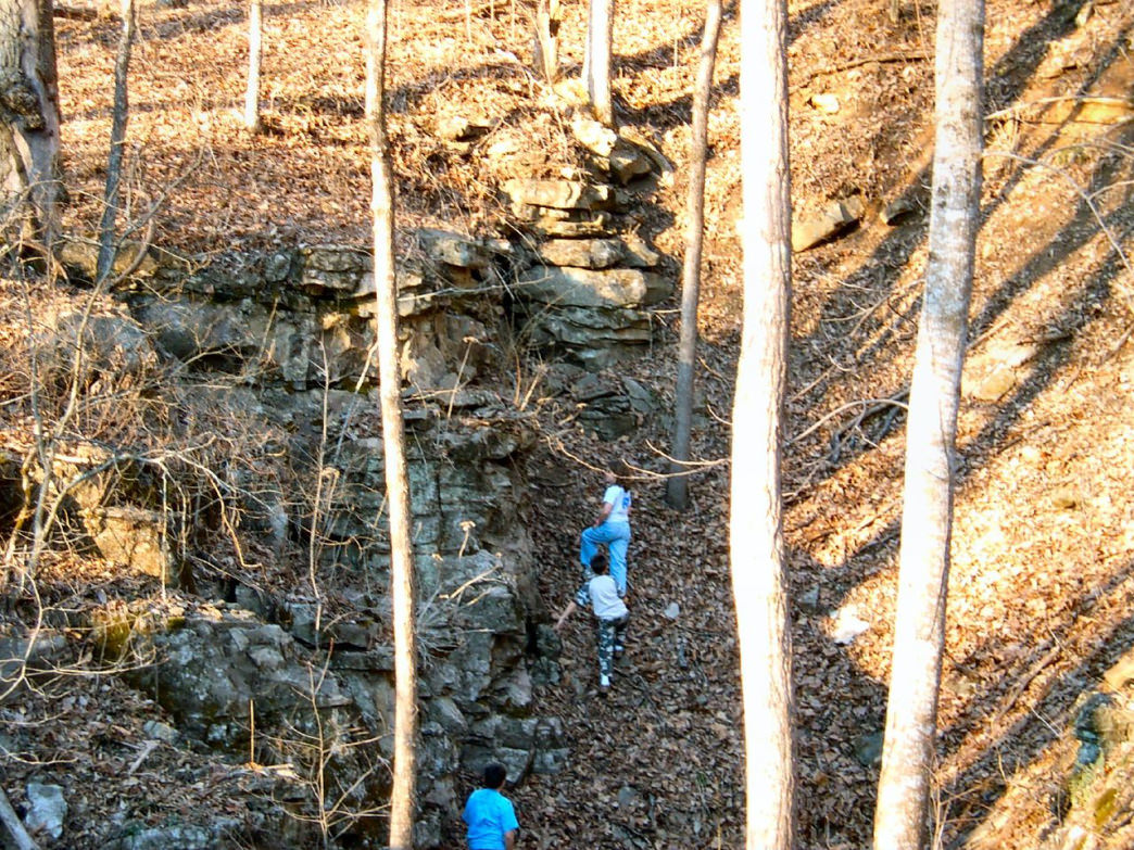 Geocachers search for a cache in the woods.