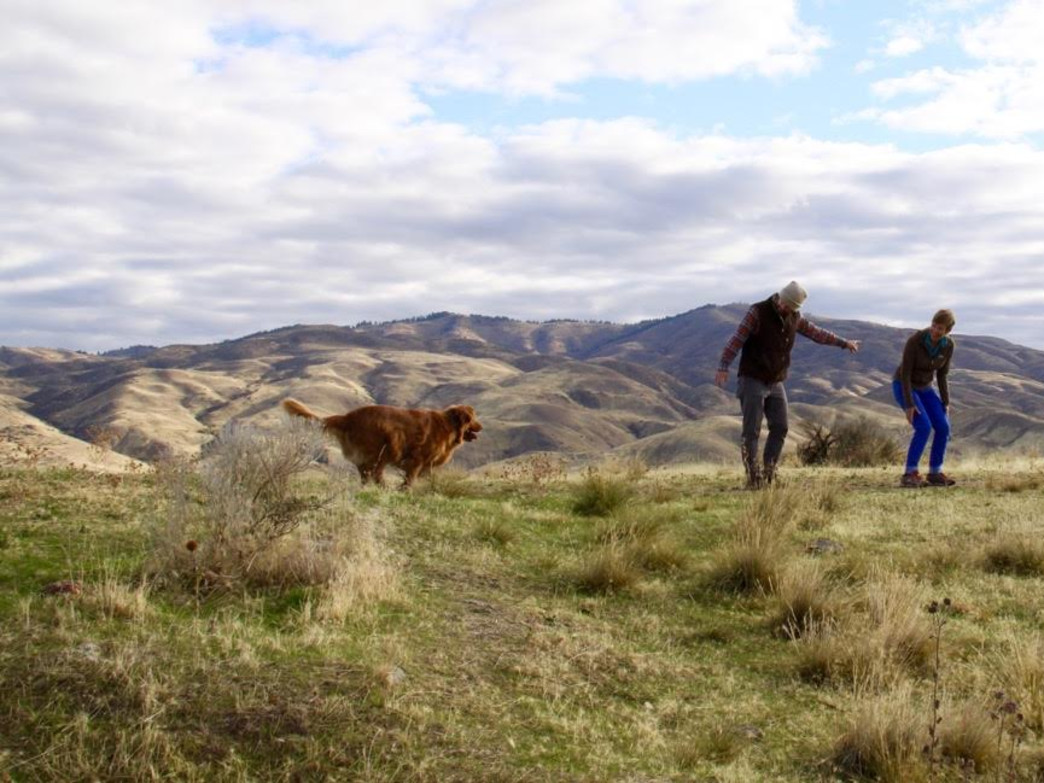 Many of Boise's Foothills Trails offer great places for hiking with dogs, and the views are sweet, too.