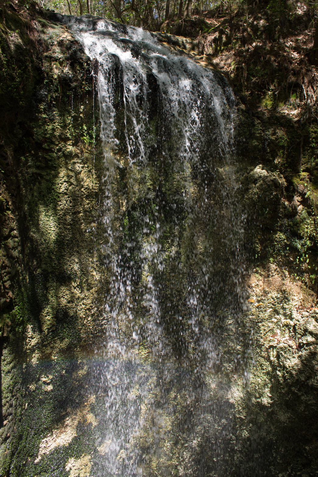The tallest waterfall in Florida isn't your typical cascade.