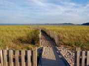 Image for Plum Island Barrier Beach