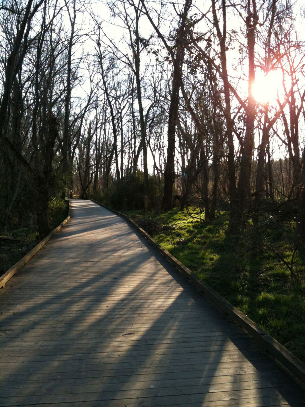 From the farm to the city - Molly's childhood taught her the value of spending time outdoors. Four Mile Creek Greenway is her favorite greenway escape