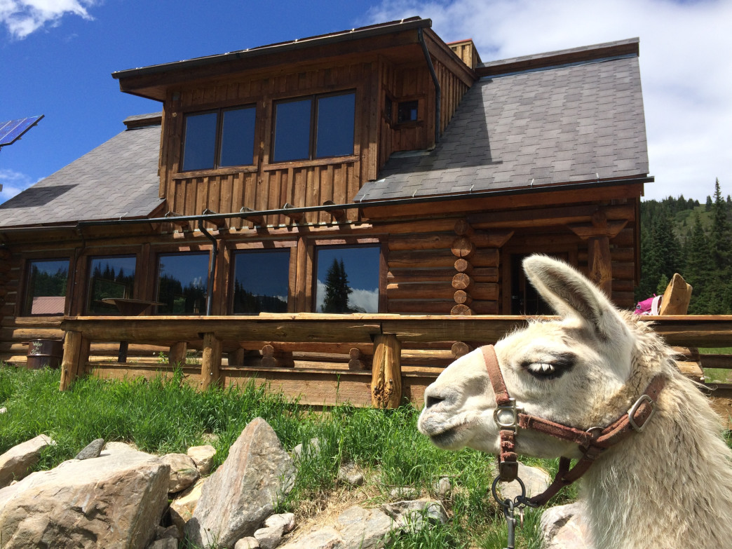 If you lead a llama to a backcountry hut, you can have a bed, too. Ask Paragon Guides to show you the way.