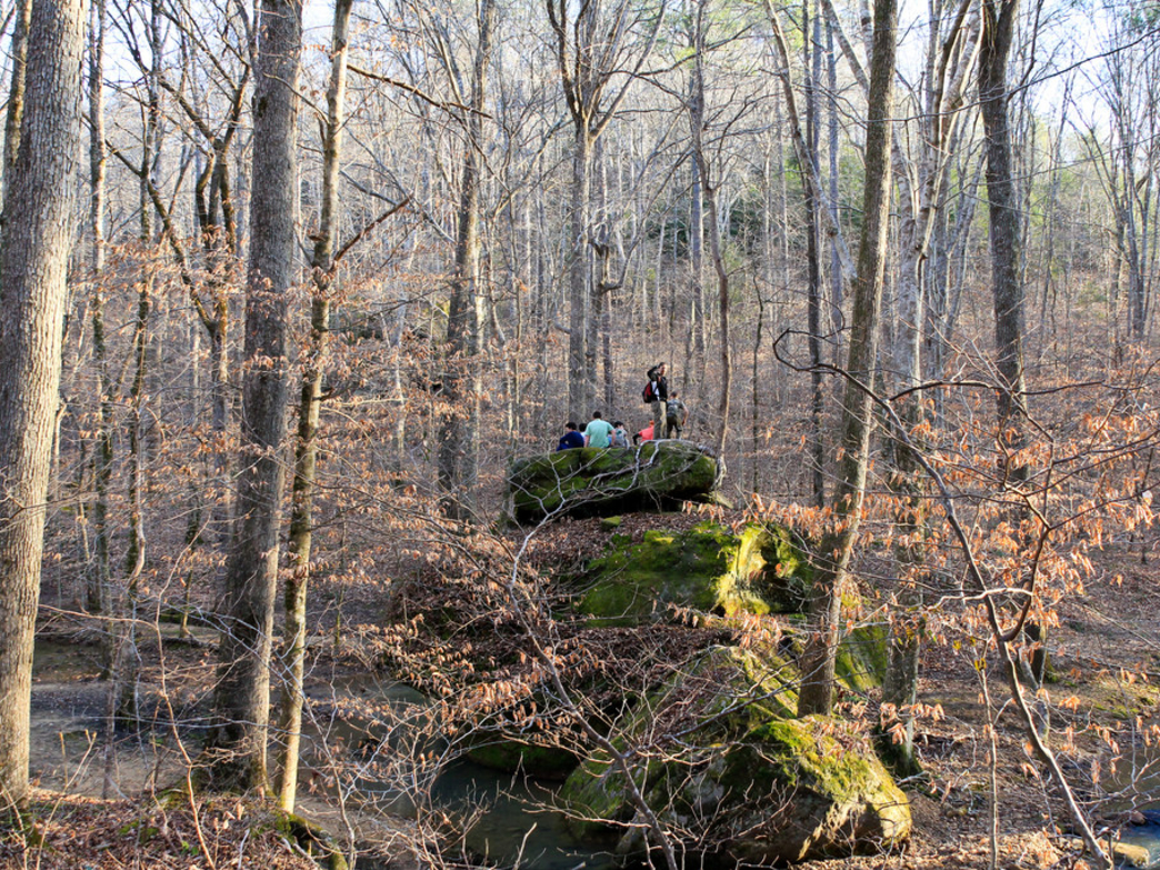 Hiking opportunities abound in the Bankhead National Forest.