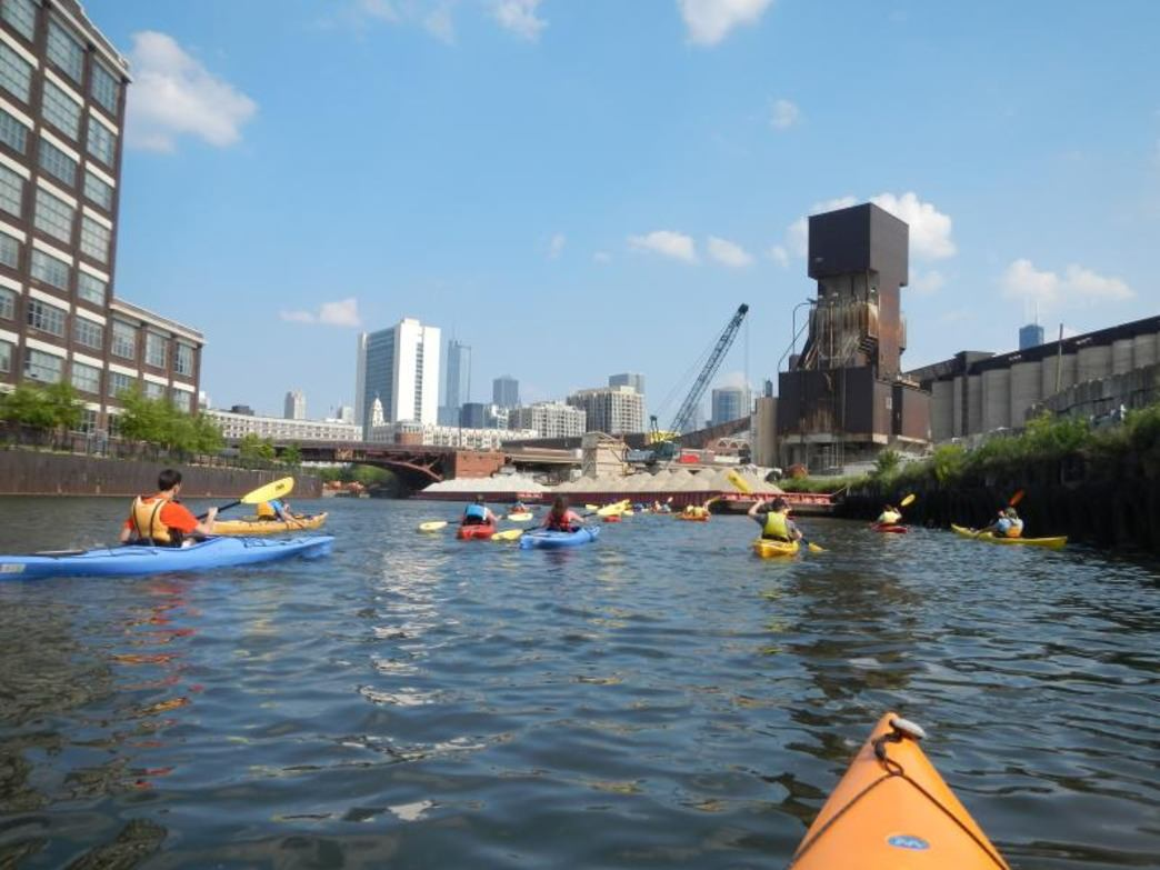 The Chicago River has become a popular spot for group kayaking trips.