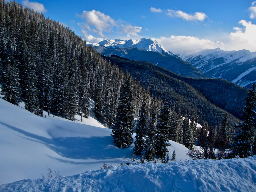 Locals know to head to the backcountry to find fresh tracks near Aspen