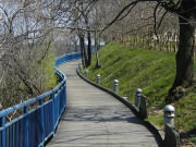 Image for Chattanooga Riverwalk