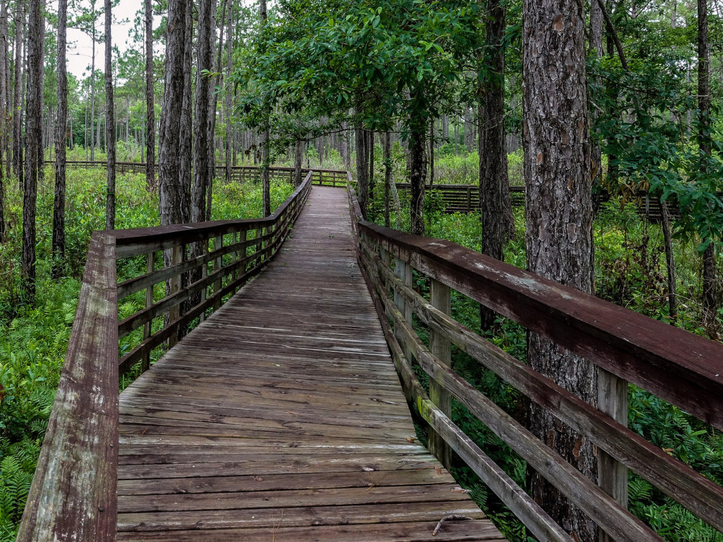 National Trails Day is June 2, celebrate out on the trails.