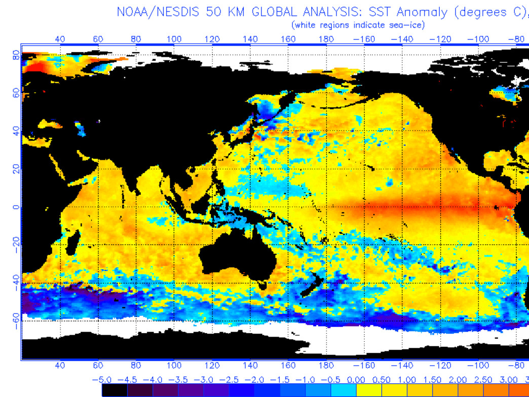 Sea surface temperatures of the Pacific Ocean point to this being a monster El Niño.