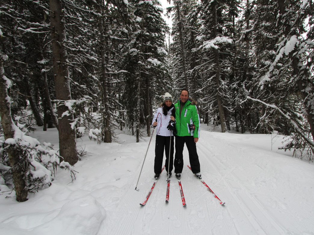 Cross country skiing in a winter wonderland
