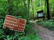 20170623_Tennessee_Chattanooga_Skyuka Springs on Lookout Mountain_Trail Running1
