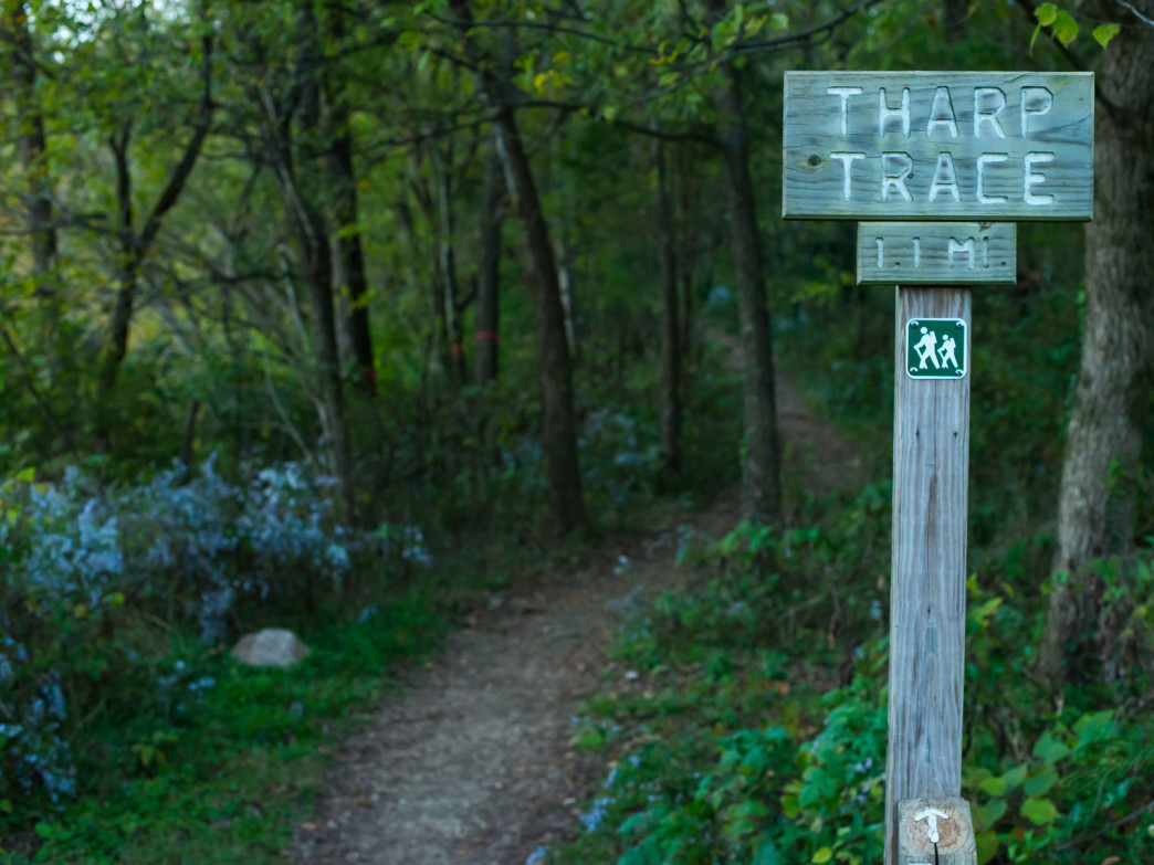The Tharp Trace trail climbs up to the cliffs behind the quarry lake.