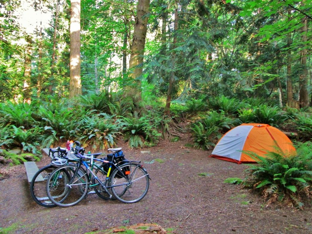 A perfect little campsite in Larrabee State Park