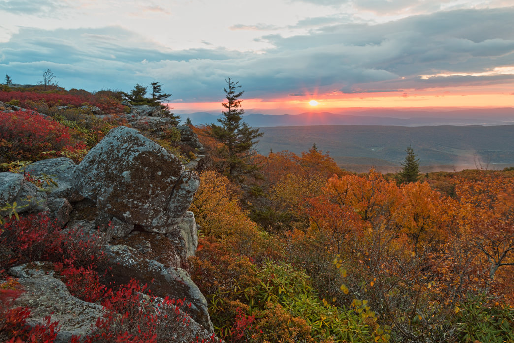 Autumn in Dolly Sods is hard to beat.     Nicolas Raymond
