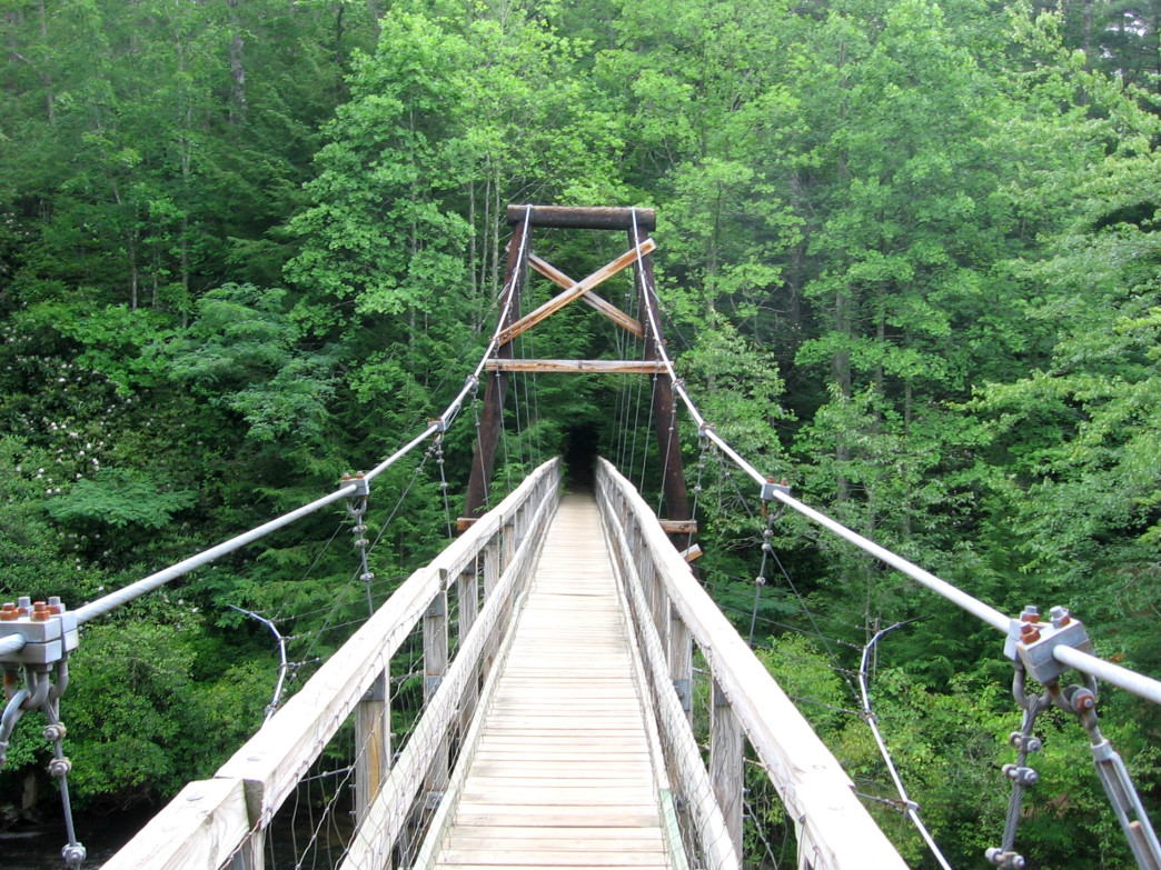 A 270-foot suspension bridge crossing the Toccoa River on the Benton MacKaye Trail in North Georgia.