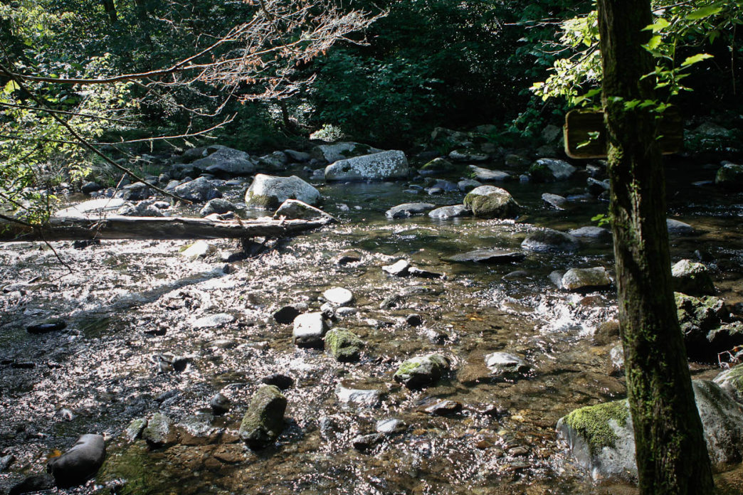 There are several creek crossings along the Slickrock Creek Trail.     Clay Duda