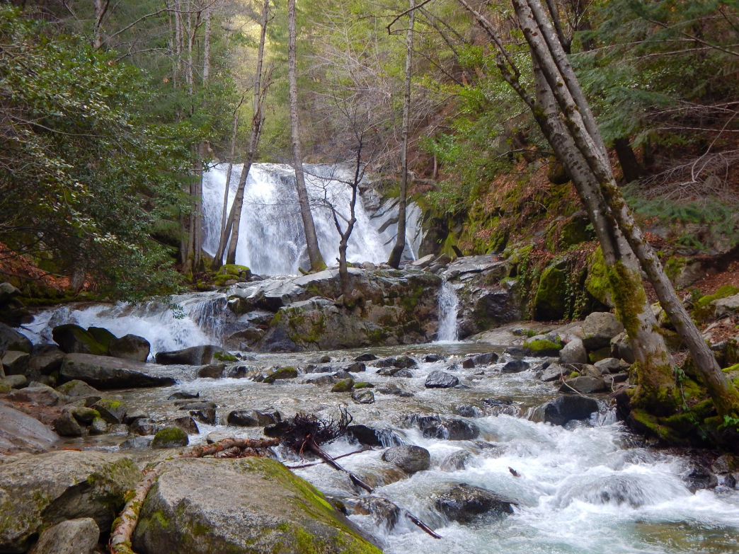 Surrounded by lush greenery, Brandy Creek Falls is a must-see at Whiskeytown National Recreation Area.