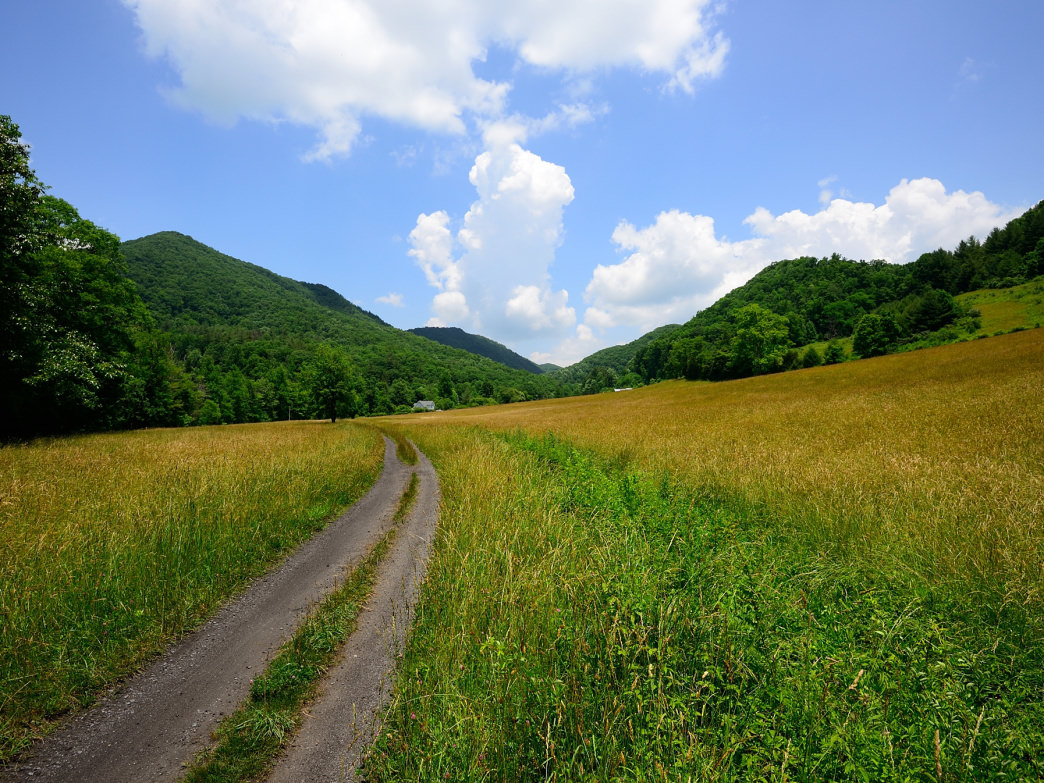 The Virginia Creeper Trail is the perfect challenge for hardcore runners.
