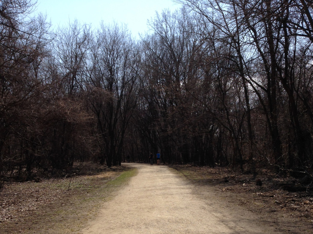 You'll find plenty of off-road biking trails in the Minnesota State Park system.
