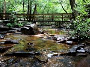 20170703_Fall Creek Falls_Hiking7