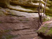 Image for Starved Rock State Park - Paddling